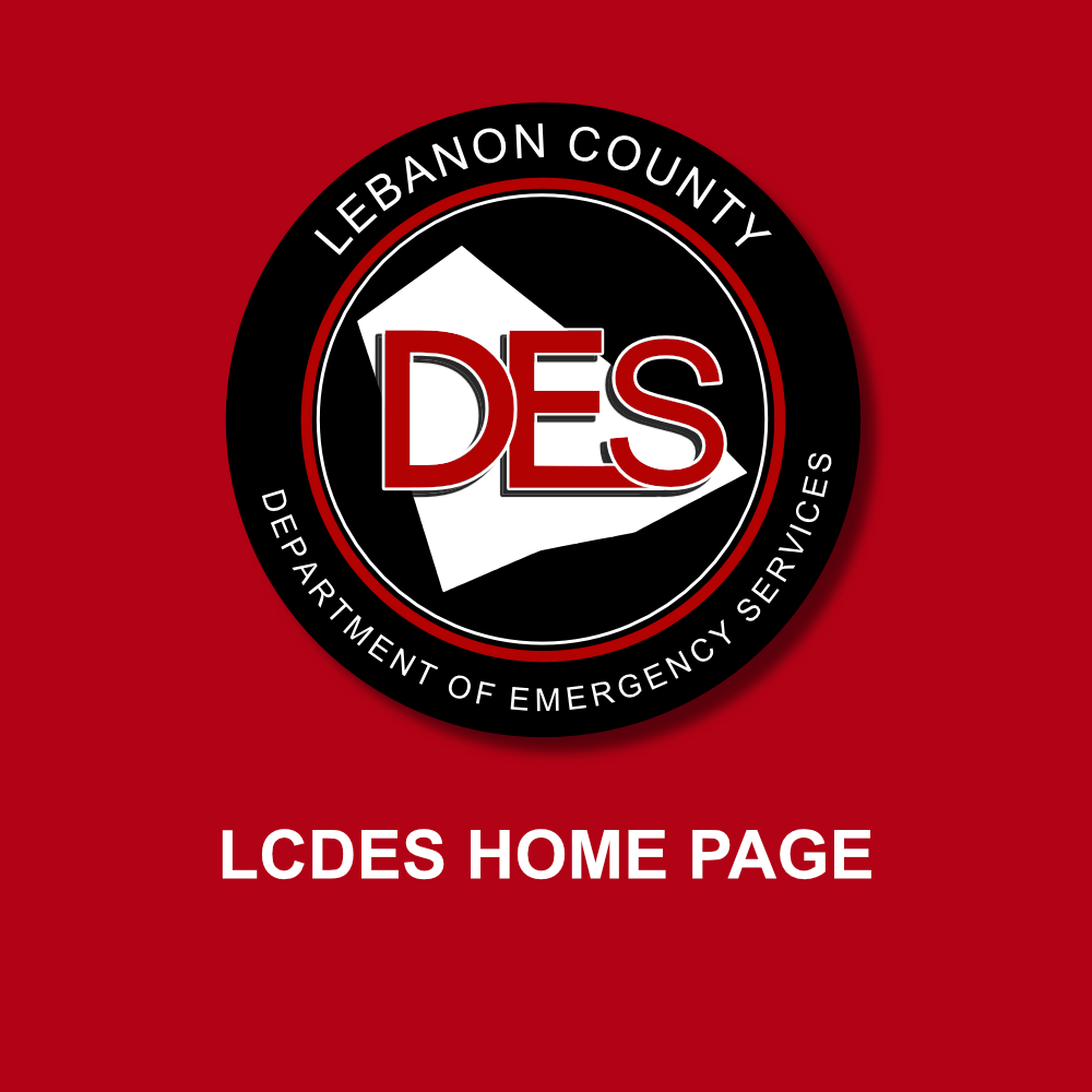 https://www.lcdes.org/wp-content/uploads/2021/01/deshomepage-3.png